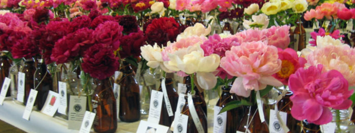 APS Annual Convention   American Peony Society